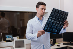 工作在实验室里的严肃的英俊的放射学家 免版税库存照片