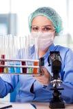 工作在实验室里的妇女化学家 库存照片