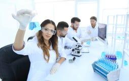 工作在实验室里的小组年轻科学家 库存图片