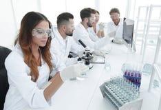 工作在实验室里的小组年轻科学家 库存照片