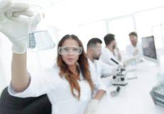 工作在实验室里的小组年轻科学家 免版税库存图片