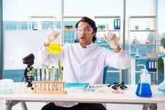 工作在实验室里的男性生物工艺学科学家化学家 免版税库存图片