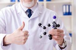 工作在实验室里的老男性化学家 库存图片