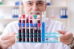 工作在实验室里的老男性化学家 免版税库存照片