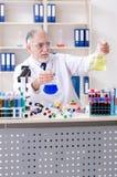 工作在实验室里的老男性化学家 库存照片