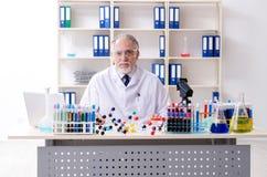工作在实验室里的老男性化学家 免版税库存图片