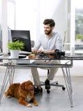 工作在宠物友好的工作场所的商人 免版税库存图片