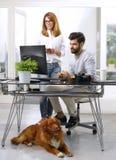 工作在宠物友好的工作场所的商人 库存照片