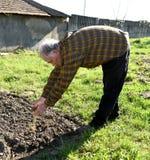 工作在庭院里的农夫 免版税库存图片