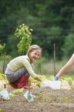 工作在庭院里的小女孩 库存照片