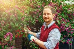 工作在庭院里的愉快的人 免版税库存照片