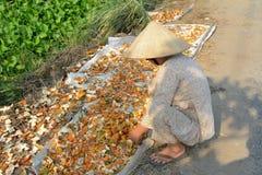 工作在房子的一个老妇人在越南南方 库存照片