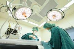 工作在手术室的两位兽医医生 免版税库存图片