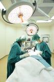工作在手术室的两位兽医医生 免版税库存照片