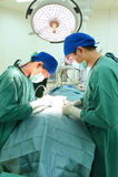 工作在手术室的两位兽医医生 库存图片
