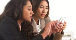 工作在智能手机的不同种族的女实业家 免版税图库摄影