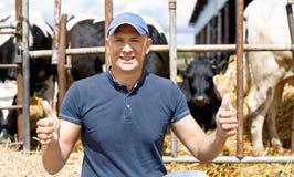 工作在有奶牛的农场的农夫 库存照片