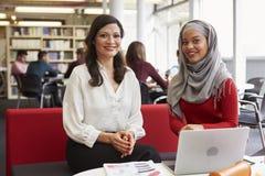 工作在有家庭教师的图书馆里的女性大学生 库存图片