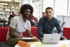 工作在有家庭教师的图书馆里的男性大学生 免版税图库摄影