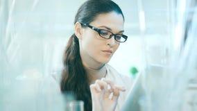 工作在有烧瓶的一个实验室的妇女的框架 股票视频