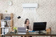 工作在有空调的办公室的女实业家 库存图片