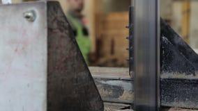 工作在木匠业商店 影视素材