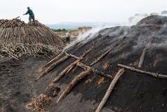 工作在木炭生产 免版税图库摄影