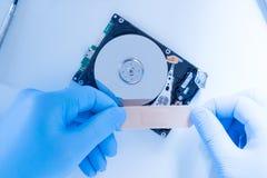 工作在残破的硬盘上的实验室工程师 免版税库存照片