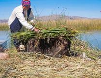 工作在浮动Uros海岛的传统村庄的土产人 免版税库存图片