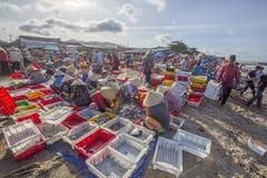工作在海滩的越南妇女在长的海氏鱼市上 免版税库存照片