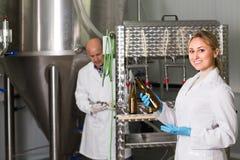 工作在现代啤酒厂的妇女 库存图片