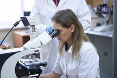 工作在生命科学实验室的医疗保健研究员 图库摄影