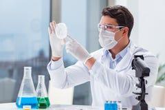 工作在病毒疫苗的实验室的男性医生 库存照片