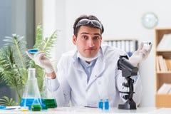 工作在病毒疫苗的实验室的男性医生 库存图片
