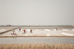 工作在盐堆的农夫在ThailandHUAHIN,泰国- 2008年5月13日:未认出的人民在盐农场运载盐在Huahin, 免版税库存图片