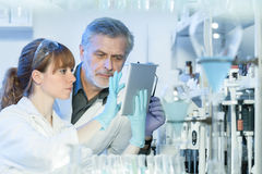 工作在科学实验室的医疗保健研究员 图库摄影