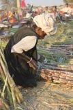 工作在竹藤茎的印地安人 免版税库存图片