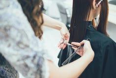 工作在美容院、理发和头发称呼的美发师 免版税图库摄影