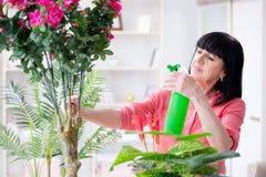工作在花店的妇女卖花人 免版税库存图片