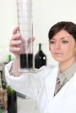 工作在酒实验室 免版税库存照片