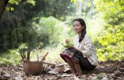工作在雨林的亚裔妇女 库存照片