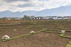 工作在领域的农夫在鹤庆在云南 免版税库存照片