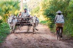 工作在领域的农夫 免版税库存图片