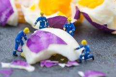 工作在鸡蛋的微型工作者人民 免版税库存照片