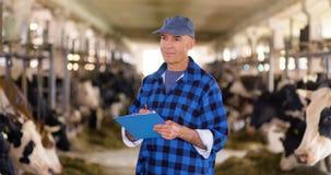 工作在Cowsheed的家畜稳定的农夫 股票录像