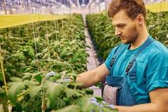 工作在g的水力剪刀推力平台的友好的农夫 免版税图库摄影