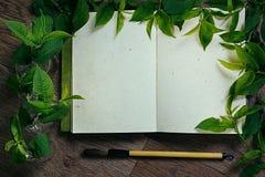 工作场所画家和绿色叶子 介绍 空白的笔记本 春天空白笔记本 库存照片