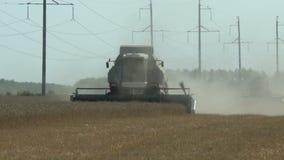 工作收获在成熟麦子的领域的组合 影视素材