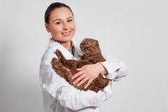 工作服的少女兽医有在她的胳膊的一只滑稽的猫的 特写镜头 库存照片