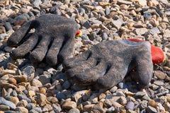 工作的手套在庭院里 免版税库存图片